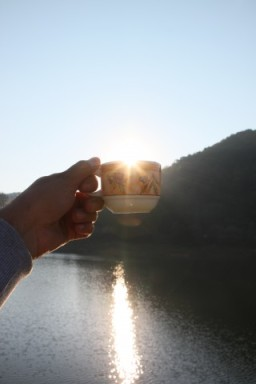 Empty-Cup-of-Coffee-in-the-Sunrise_Hand-Held__IMG_6608-320x480