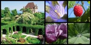 yvoire-garden-5-senses