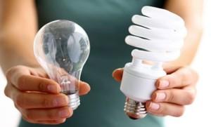 bulbs-400x242