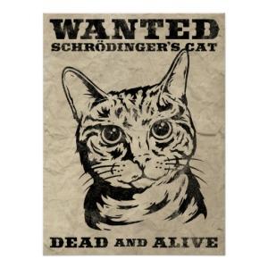 schrodingers_cat_wanted_dead_or_alive_poster-rb5343cbe8b544d8bb2bcae895ee346ca_wv4_8byvr_512