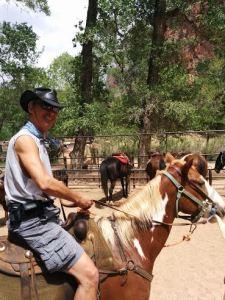 horseunnamed