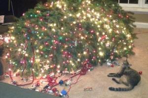 tree-down