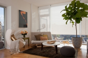 feng-shui-in-your-living-room-design